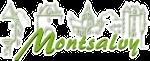Logo de Montsalvy